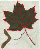 maple leaf needle lace pattern